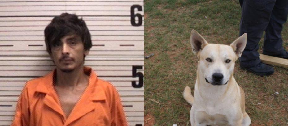 O cachorro Bo entregou seu tutor à polícia. (Foto: Reprodução / Facebook / Prattville Police Department)