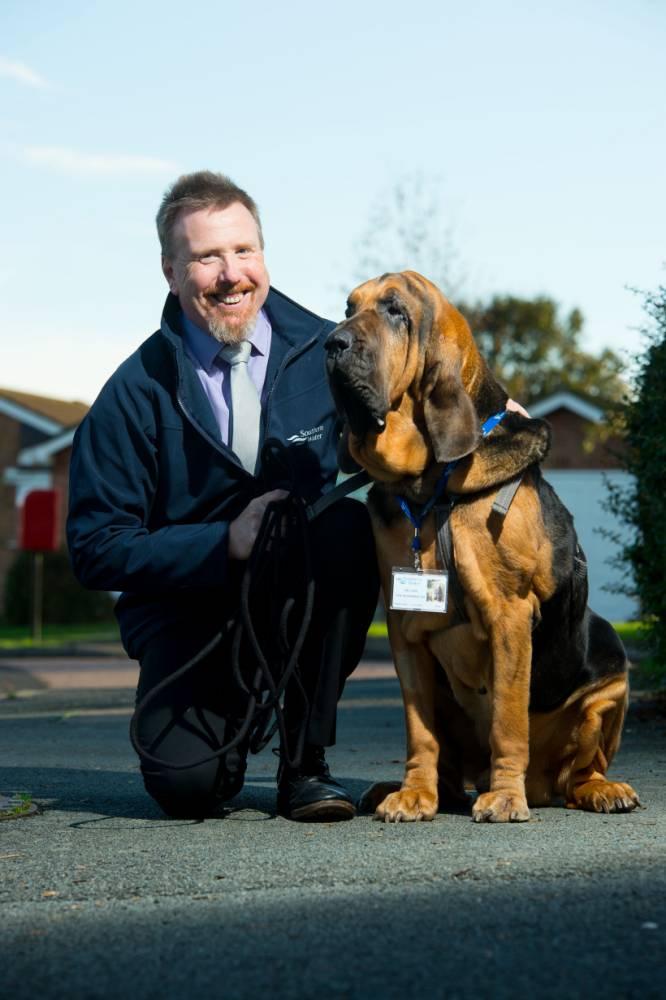 Steve Williams e seu cão Hector trabalham juntos. (Foto: Reprodução / Metro UK)