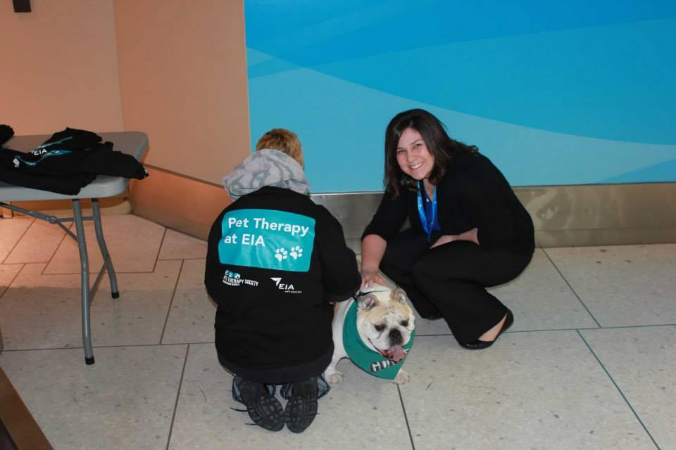O trabalho é realizado com o apoio de voluntários e seus cães. (Foto: Reprodução / Facebook / Edmonton Internacional Airport)
