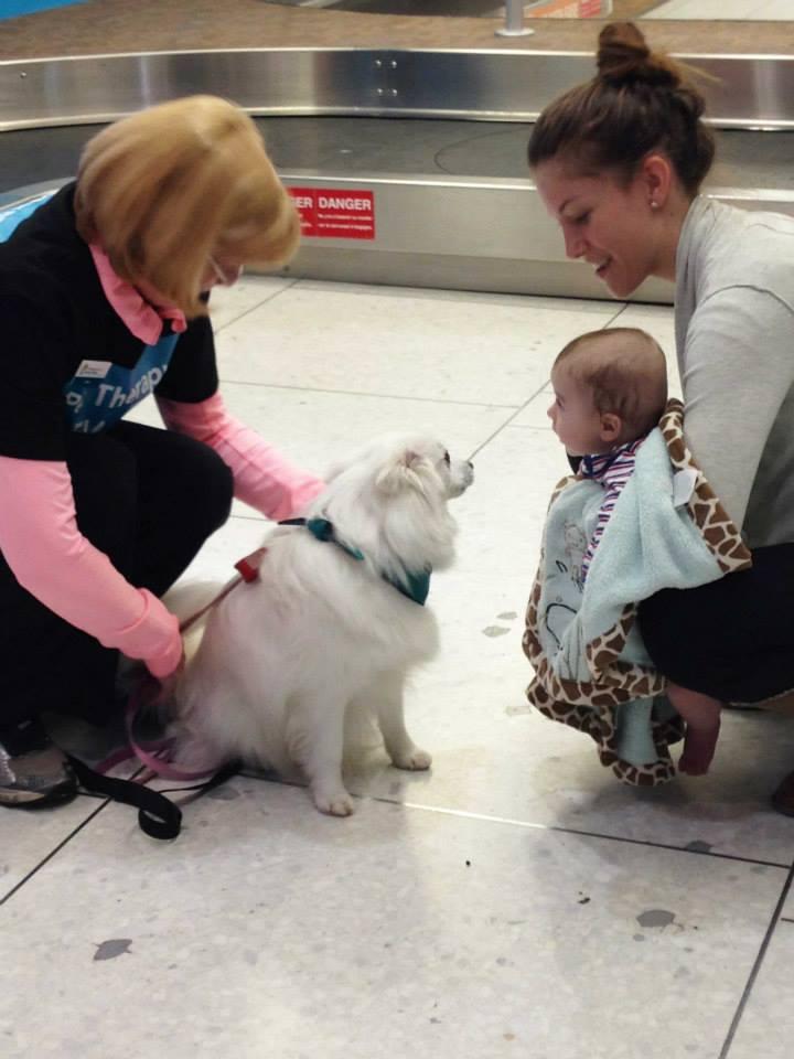 Pessoas de qualquer idade podem interagir com os cães. (Foto: Reprodução / Facebook / Edmonton Internacional Airport)