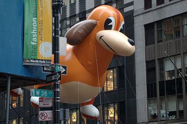A dachshund Frieda. (Foto: Reprodução / Bark Post)