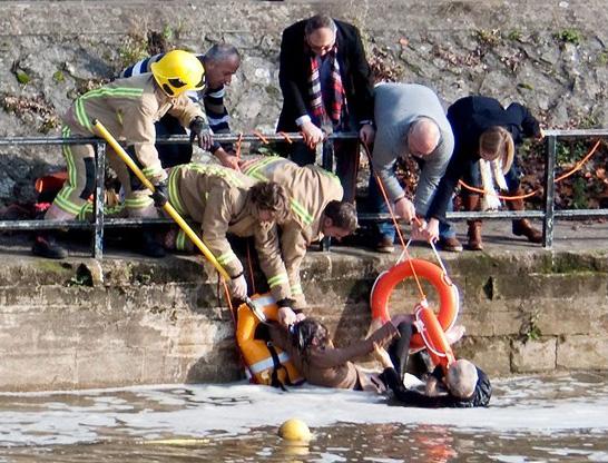 Idosa pula em rio para salvar seu cãozinho. Foto: Reprodução / LifeWithDogs