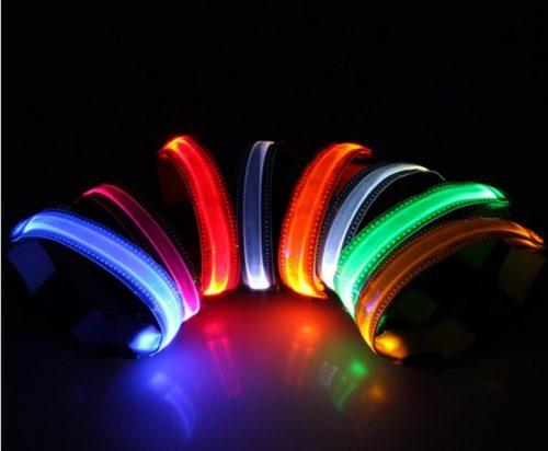 Coleiras de LED. (Foto: Divulgação)