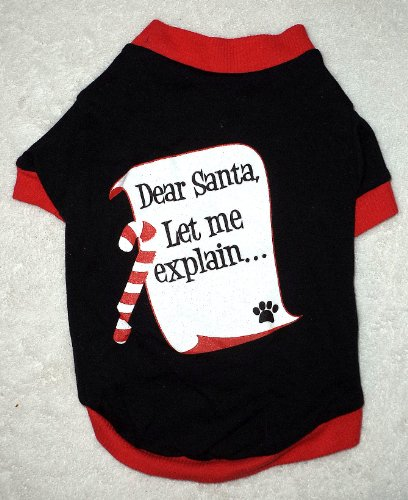 Camiseta Dear Santa, Let me explain... (Foto: Divulgação)