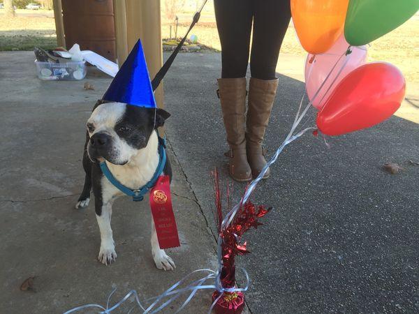 Butch em sua festa. (Foto: Reprodução / AL.com)