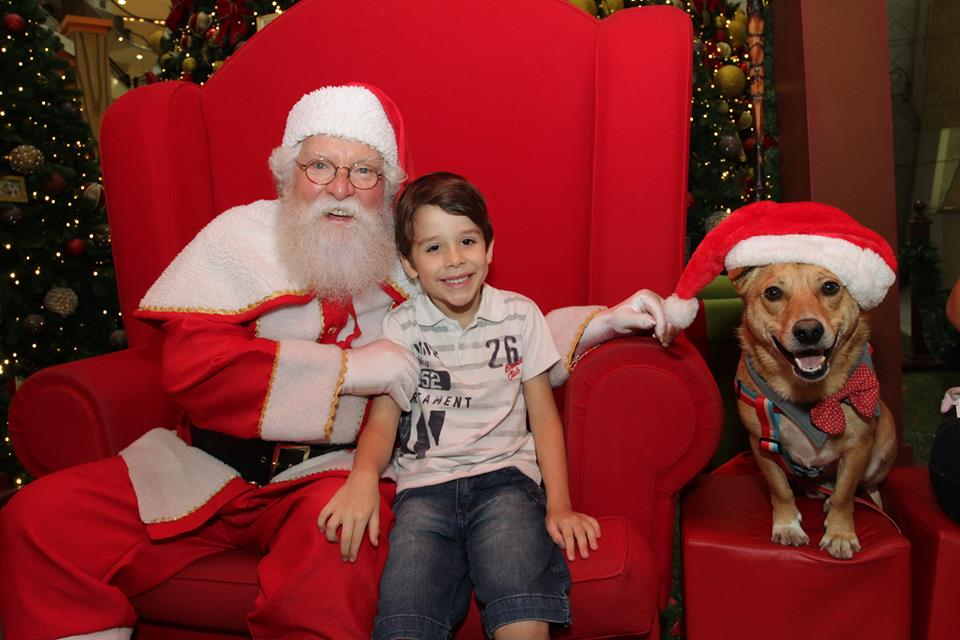 Foto com Papai Noel e o cachorro Darci. (Foto: Reprodução / Facebook / Mariana Siebert)