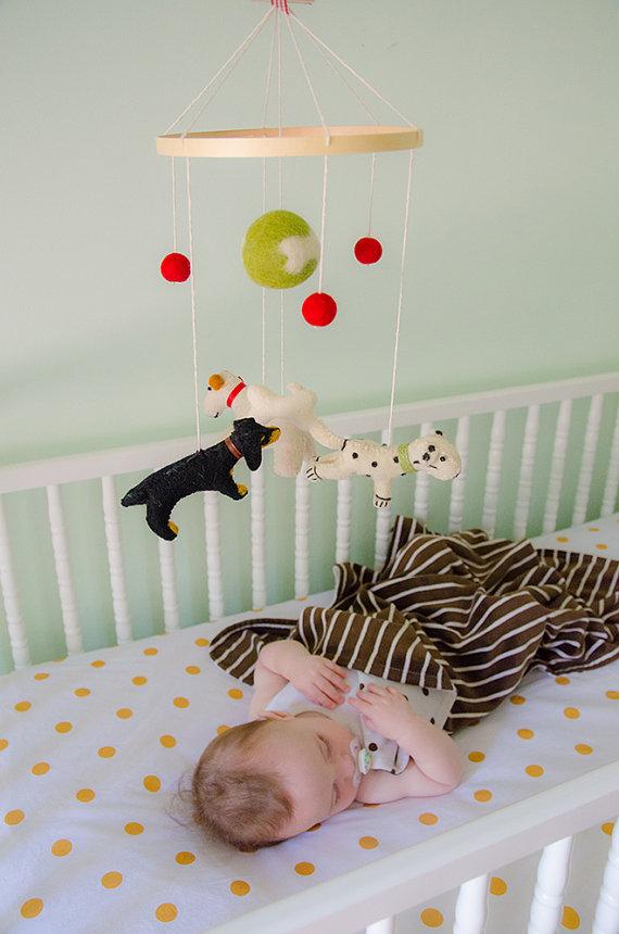 cachorro-mobile-formato-bebes-galeria-fotos-pdd (13)
