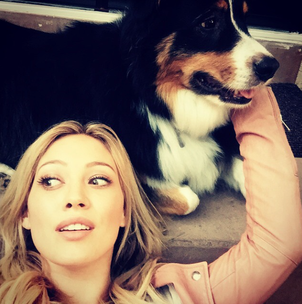 Hilary Duff e o cachorro Dubois. (Foto: Reprodução / Instagram)