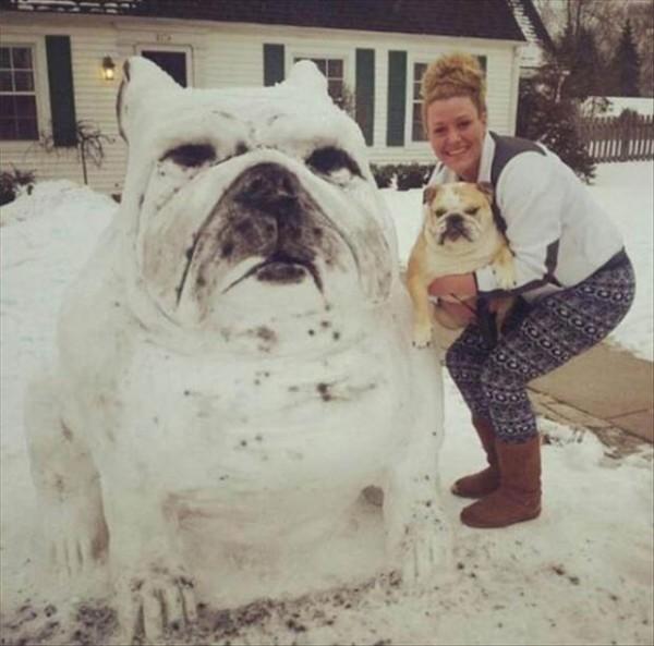 cachorro-neve-02