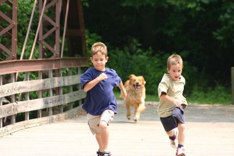 Cachorro brincando com crianças. (Foto: Reprodução / Google)
