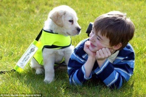 Animais de estimação ajudam crianças com autismo. (Foto: Reprodução / Daily Mail UK)