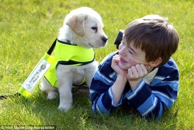 What Kind Of Dog Is Best For Kids With Autism