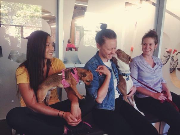 Um reunião bem mais descontraída. (Foto: Reprodução / Instagram)