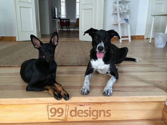 Tari e Brody. (Foto: Reprodução / Facebook)