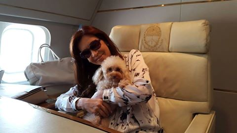 Cristina Kirchner viajando com sua cachorra Lolita. (Foto: Reprodução / Facebook / Cristina Fernandez de Kirchner)