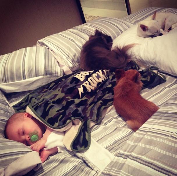 Juntos até na hora de dormir! (Foto: Reprodução / Instagram)