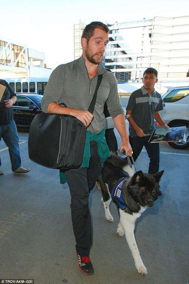 O cachorro ajuda a lidar com o medo e a ansiedade de passageiros durante o voo. (Foto: Reprodução / Daily Mail UK)