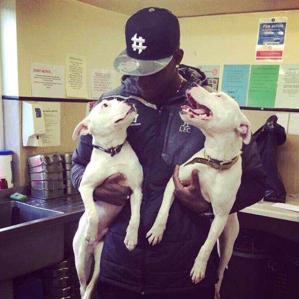Mario Balotelli com os dois cachorros que adotou. (Foto: Reprodução / Instagram)