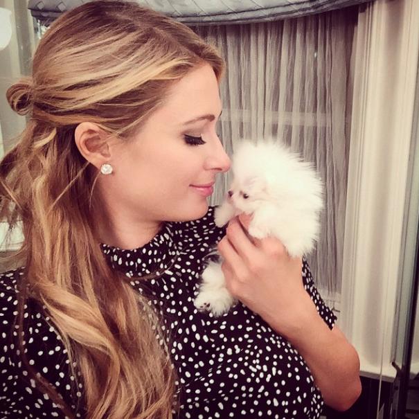 Paris lotou seu Instagram com fotos da cachorra. (Foto: Reprodução / Instagram)