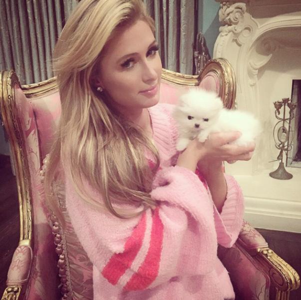 Paris Hilton com sua nova cachorra. (Foto: Reprodução / Instagram)