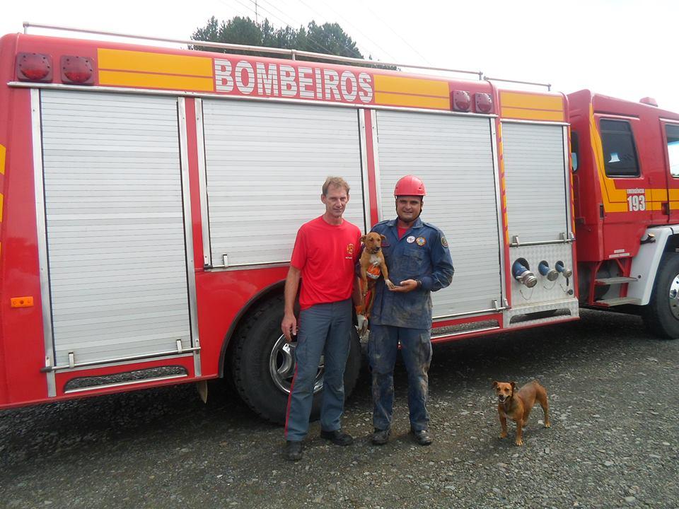 Os bombeiros Carlos Mathias e Jean Renato com o cachorrinho resgatado no colo. No chão, está a mãe do filhote. (Foto: Reprodução / Facebook)