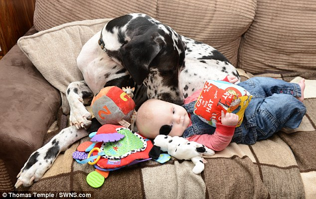 Cheirinho de bebê! (Foto: Reprodução / Daily Mail UK)