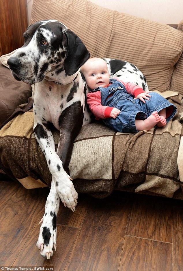 As duas estão sempre juntas. (Foto: Reprodução / Daily Mail UK)