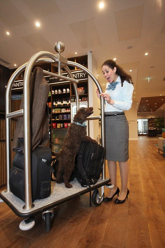 Tentando ajudar com as malas. (Foto: Reprodução / Daily Mail UK)