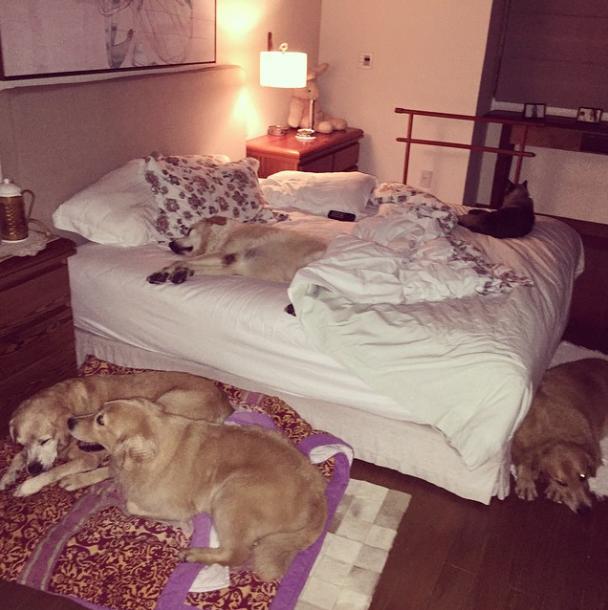 Será que sobra um espacinho na cama para ela dormir?  (Foto: Reprodução / Instagram)