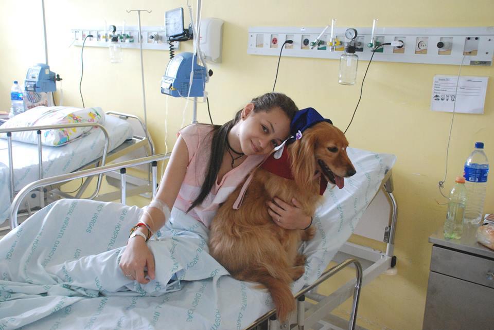 A terapia com animais traz muitos benefícios aos pacientes. (Foto: Reprodução / Facebook / Secretaria de Estado da Saúde de São Paulo)