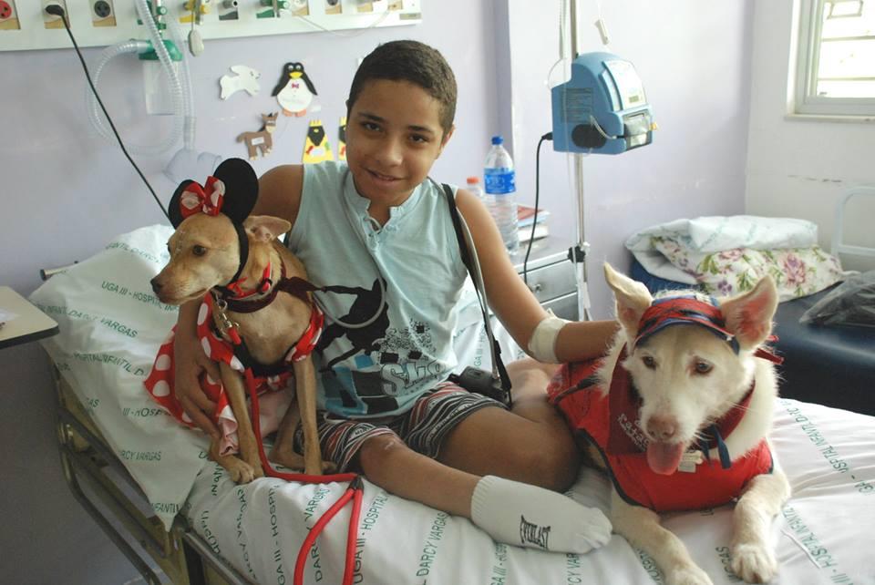 Cachorros terapeutas vestiram fantasias para alegrar as crianças internadas no hospital. (Foto: Reprodução / Facebook / Secretaria de Estado da Saúde de São Paulo)