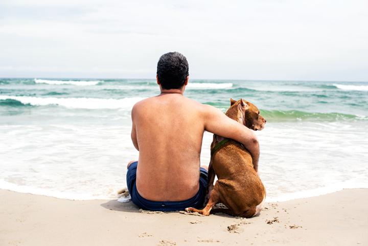 Christian e Dukes admirando o mar. (Foto: Reprodução / The Dodo / Zhenia Bulawka)