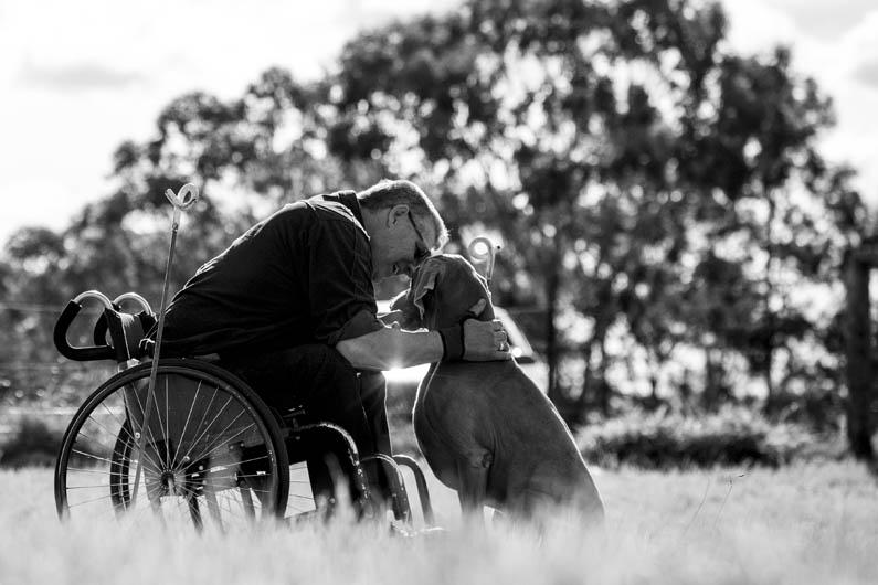"""3º lugar na categoria """"Cães de serviço"""" -  Ffiona Erskine da Austrália (Foto: Reprodução / The Kennel Club)"""