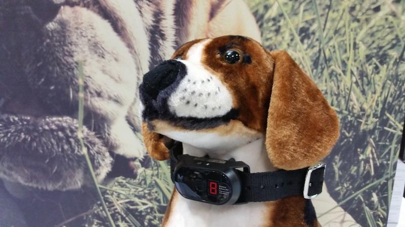 Celular para pets. (Foto: Divulgação)