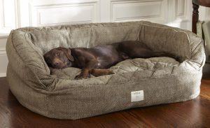 Garantir que o cachorro tenha um lugar confortável para chamar de seu. Foto: Reprodução