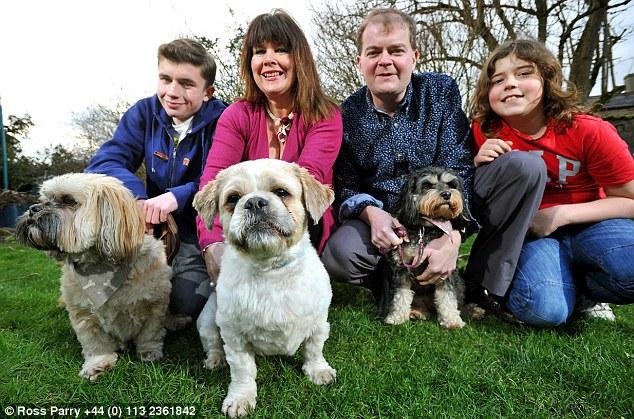 Bentley com sua nova família. (Foto: Reprodução / Daily Mail UK)