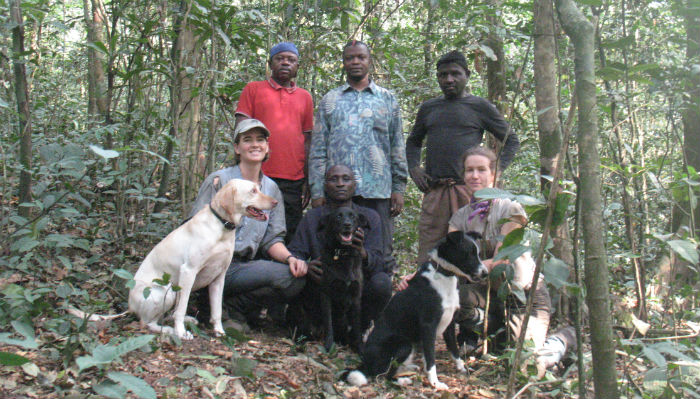 Equipe Working Dogs for Conservation. (Foto: Reprodução / Scientific American)