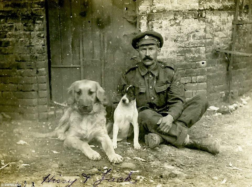 O sargento Horse Farrier com os cães Hissy e Jack, em 1916, na França. (Foto: Reprodução / Daily Mail UK)