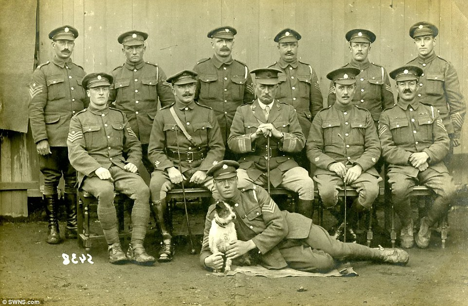 Oficiais e sargentos britânicos com um grande companheiro canino, em 1917. (Foto: Reprodução / Daily Mail UK)