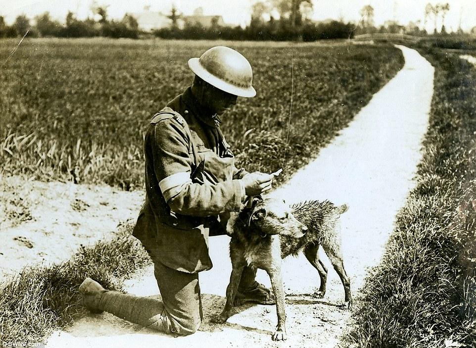 França, 1918. (Foto: Reprodução / Daily Mail UK)