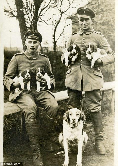 Oficiais alemães com 5 cachorros. (Foto: Reprodução / Daily Mail UK)
