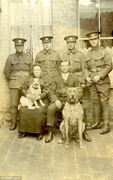 Civis posando com orgulho com dois cães e 4 soldados, em agosto de 1915. (Foto: Reprodução / Daily Mail UK)