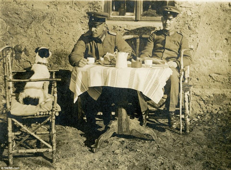 Cachorro tomando chá com dois oficiais alemães, em 1917.  (Foto: Reprodução / Daily Mail UK)