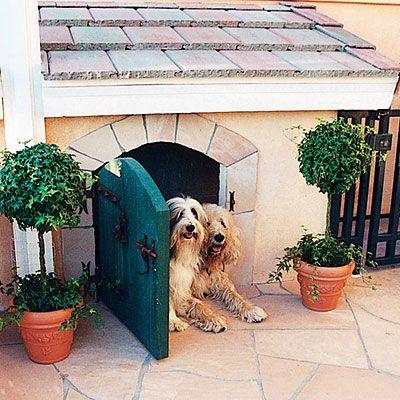 portinhas-pet-cachorro-lista-10