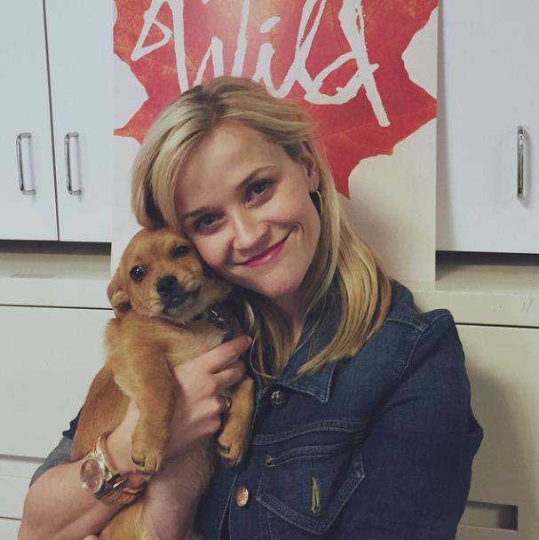 Reese Witherspoon com a cachorra Penny Lou. (Foto: Reprodução / Instagram)