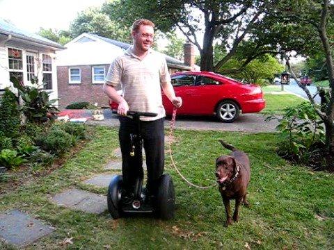 tutores-preguicosos-dog-walker-fotos-pdd (1)