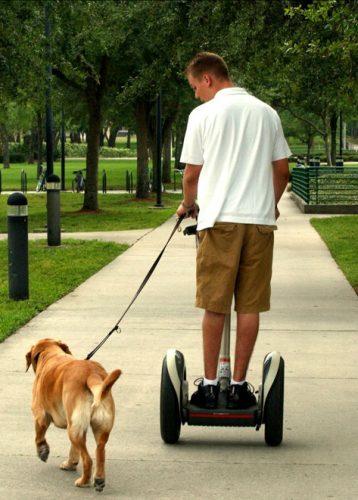 tutores-preguicosos-dog-walker-fotos-pdd (3)