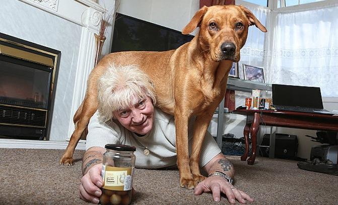 Alan Spencer com a cachorra Lexi, que salvou sua vida. (Foto: Reprodução / Telegraph)