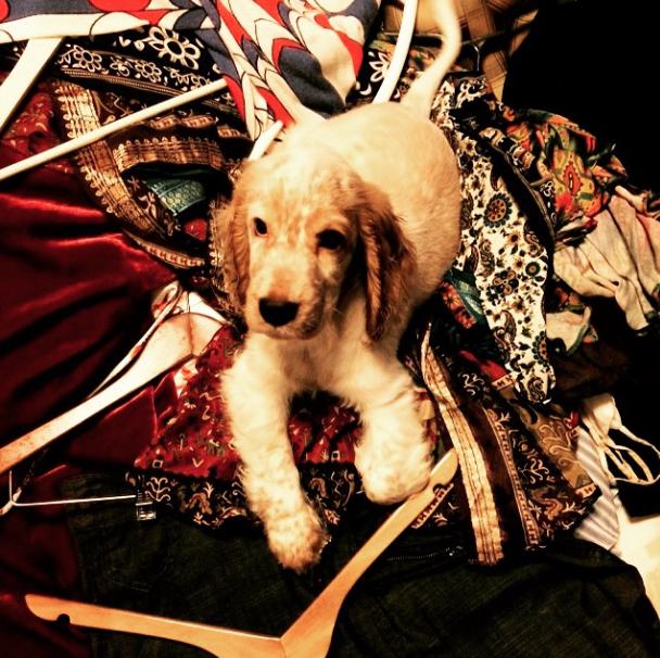 Victor com as roupas da atriz. (Foto: Reprodução / Instagram)