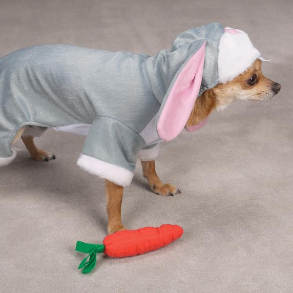 cachorro-fantasia-coelho-03